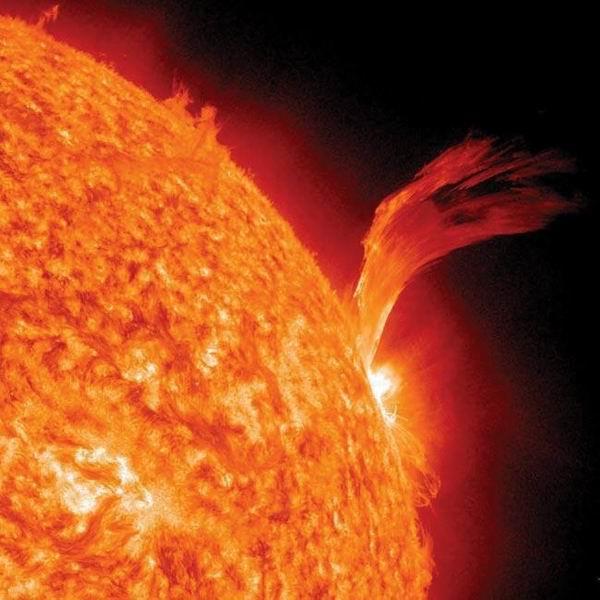 图片:活泼的太阳
